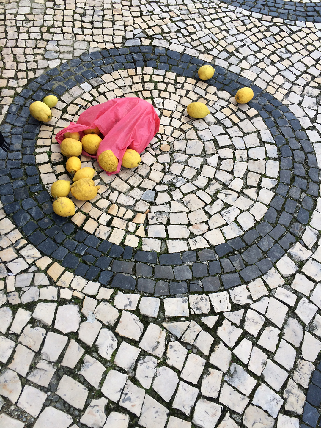 Untitled (dropped lemons)