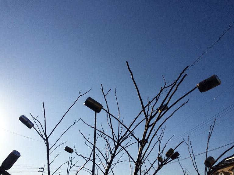 A Strong Wind (in Kameoka)